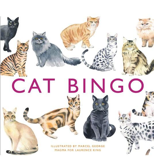 בינגו חתולים