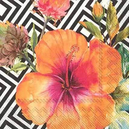 מפיות פרח