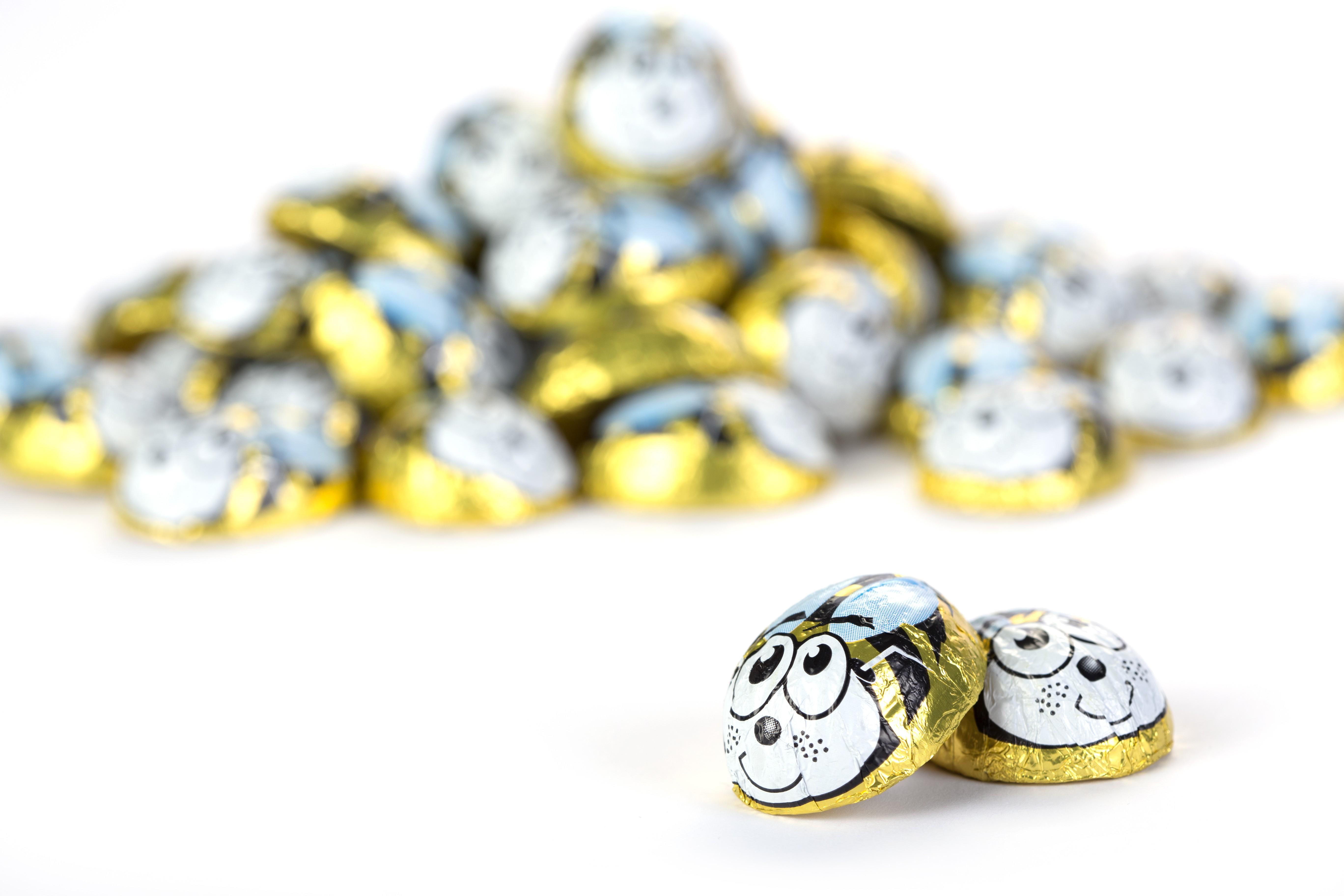 שוקולד דבורה