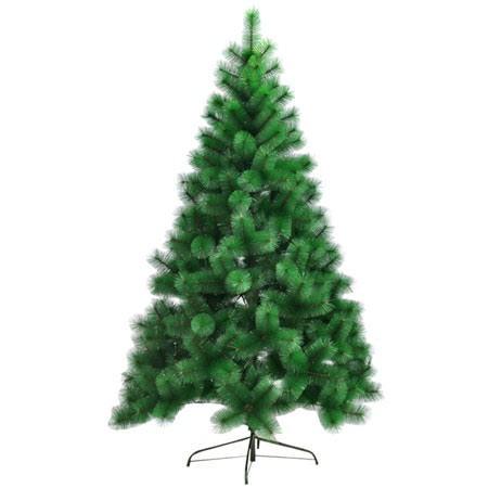 עץ אשוח בינוני