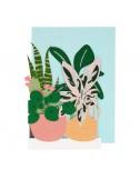 כרטיס ברכה צמחים - Meri Meri