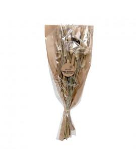 זר פרחים יבשים- מיקס לגורוס