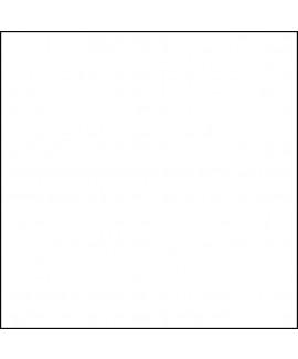 נייר משי לבן (10 דפים)