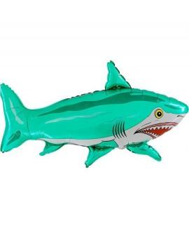 בלון הליום כריש טורקיז