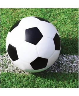 מפיות כדורגל קטנות