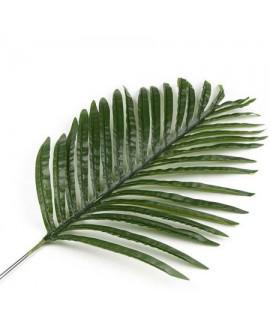 ענף דקל