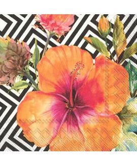 מפיות פרח טרופי