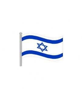 עשיריית דגלי ישראל מניילון על מקל