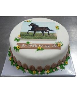 עוגת חווה