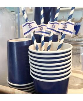 12 קשים עם דגל ישראל