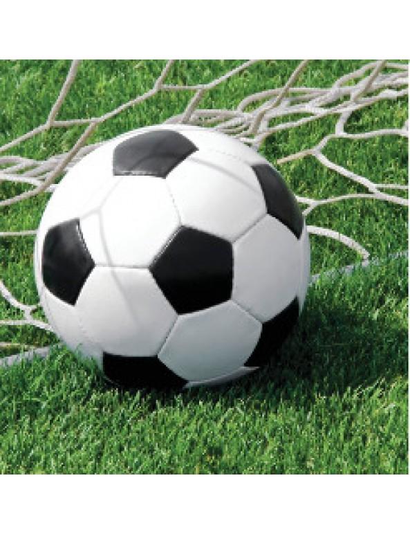 מפיות כדורגל גדולות, כדורגל, יום הולדת, יום הולדת כדורגל, עיצוב יום הולדת כדורגל, סידור שולחן כדורגל