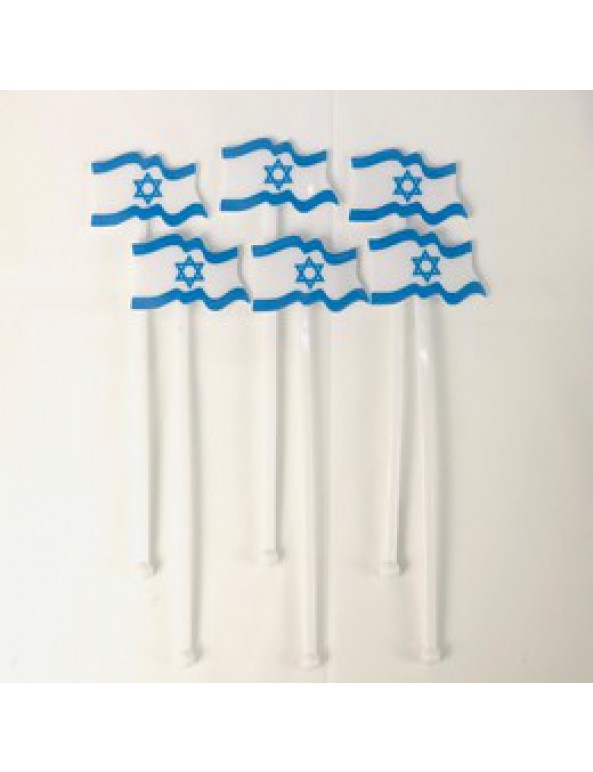 6 בוחשנים דגל ישראל