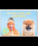 משחק הזיכרון- כלבים ובעלים